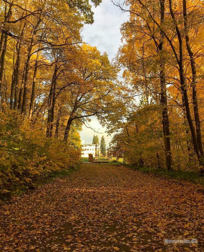 Золотая осень в селе Кирицы, Рязанская обл.