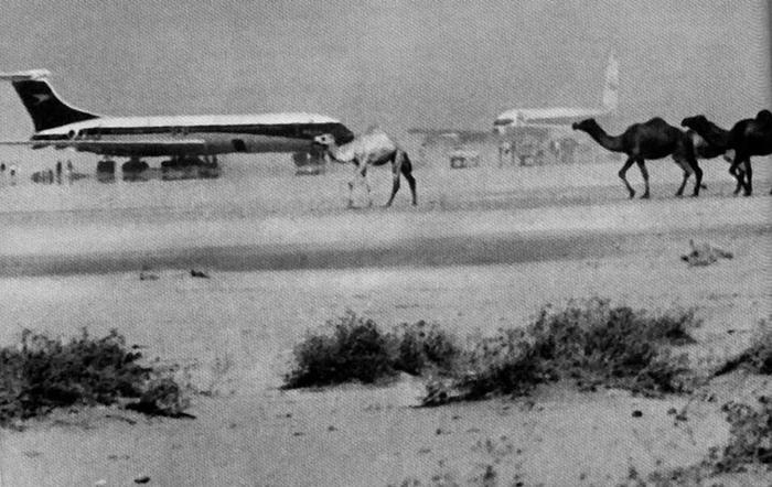 Сражение у Китим Аль-Нияма - долина слёз для иорданской армии. Иордания, Сирия, Война, 1970-1971, Длиннопост