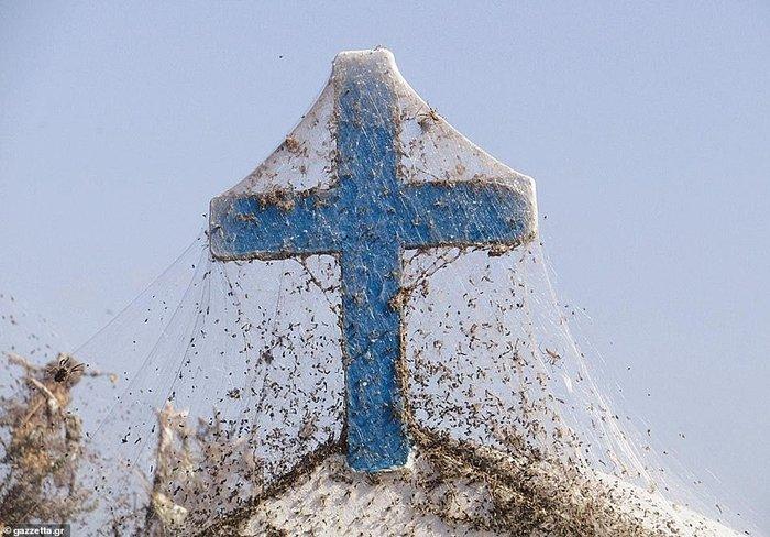 Километровая паутина окружила озеро в Греции Паутина, Озеро, Греция, Необычное, Фотография, Паук, Длиннопост
