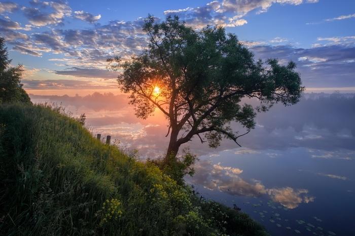 Красочный пейзаж на берегу реки Дубна. Фотография, Река Дубна, Красота природы, Россия