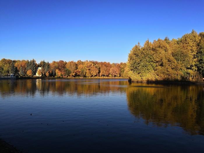 Измайловский парк. Мобильная фотография, Любитель