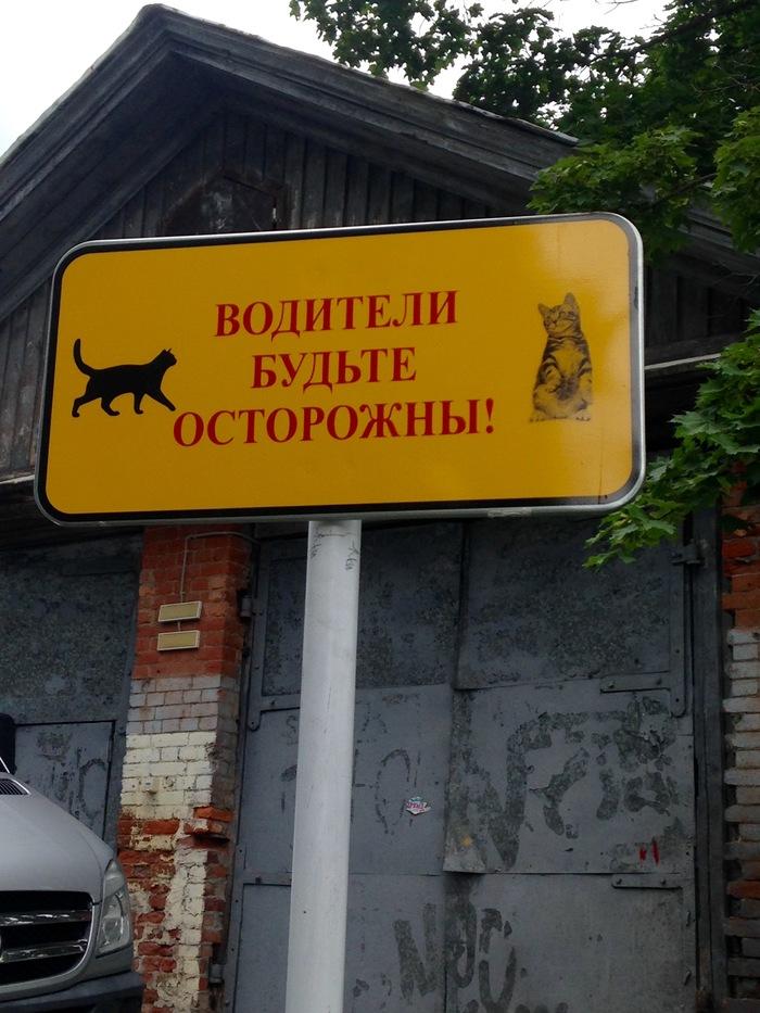 Берегите котиков Знак, Парковка, Кот