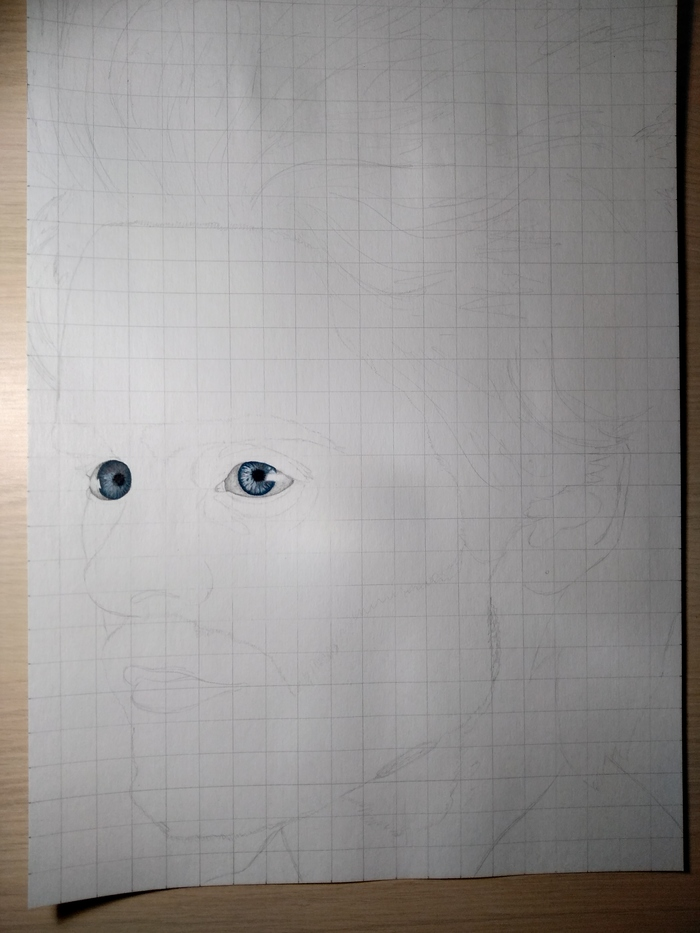 Поэтапное рисование портрета Джареда Лето Рисунок, Длиннопост, Рисунок карандашом, Карандаш, Этапы, Портрет, Джаред Лето, Музыканты