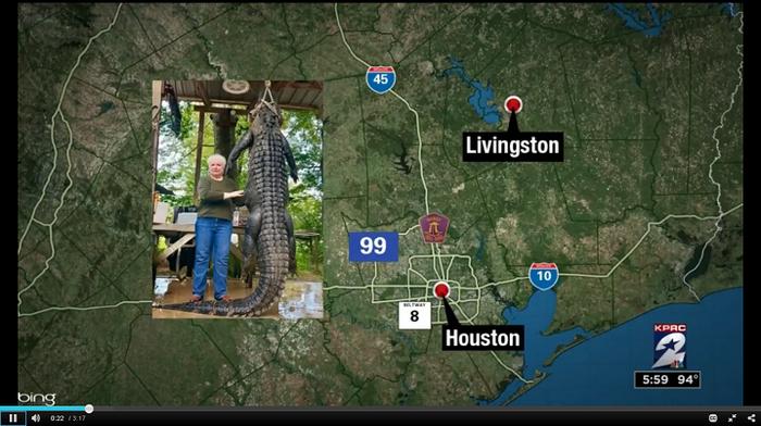 Дополняя новость из Техаса США, Техас, Новости, Мальчик, Аллигатор, Охота, Длиннопост