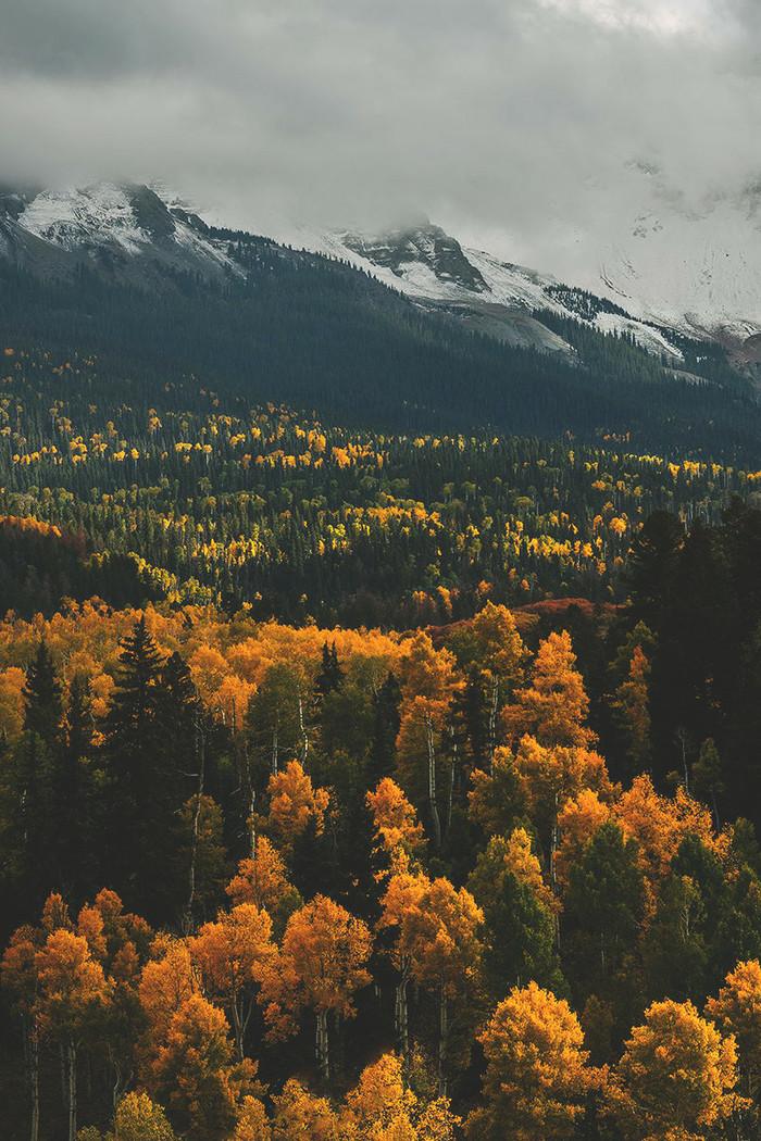 Осень и немного снега в штате Колорадо.