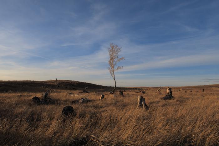 Последний Фотография, Пейзаж, Оренбургская область, Степь, Закат