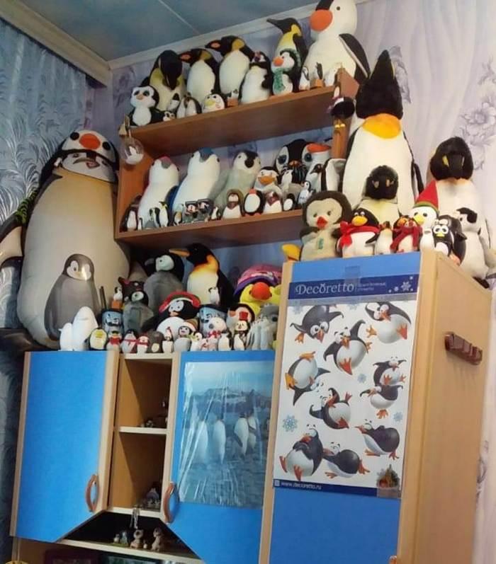 Подарок незнакомого человека Пингвины, Подарок, Добро, Зонт, Длиннопост, Радость