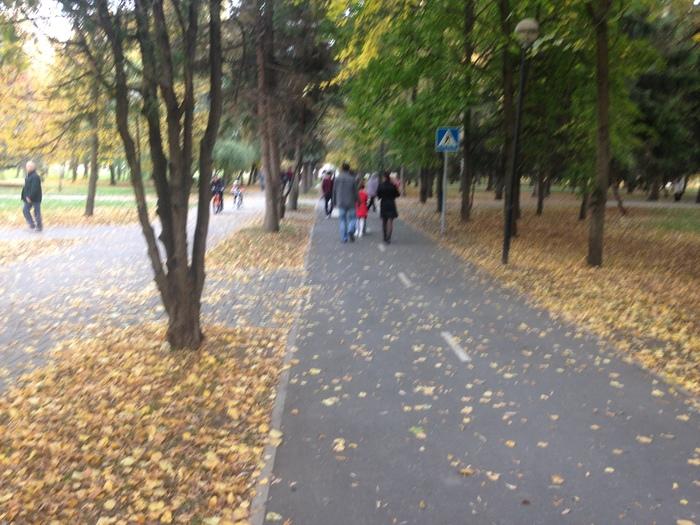 Велодорожка Велодорожка, Влюбленные, Лошади, Длиннопост, Белгород, Дети, Родители