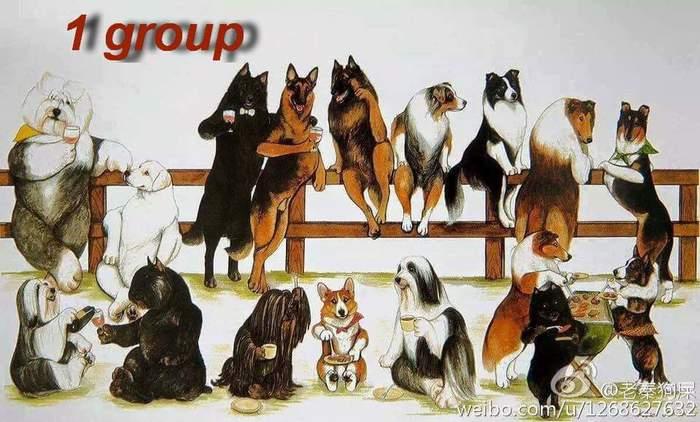 Если ты не знаешь, как выбрать породу собаки Собаки и люди, Выбор породы собаки, Без рейтинга, Группы FCI, Длиннопост, Собака