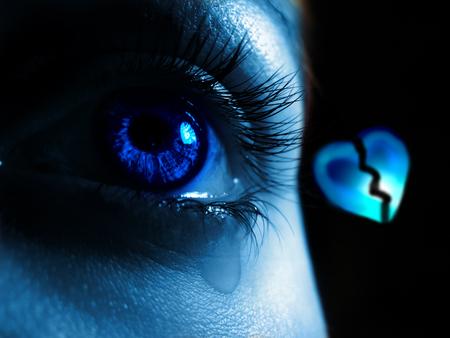 Что такое счастье 2. Биология любви и других положительных эмоций. Мозг, Разум, Сознание, Чувства, Эстетика, Красота, Любовь, Секс, Гифка, Длиннопост