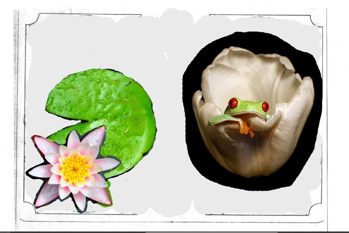 Царевна-лягушка Кожевенное ремесло, Тиснение по коже, Тиснение, Обложка с тиснением, Изделия из кожи, Оренбург, Длиннопост
