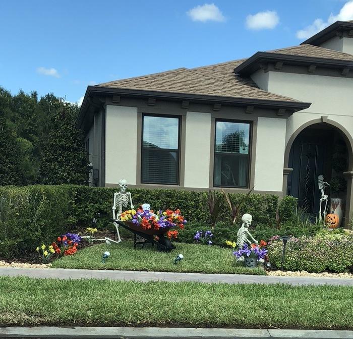 «Каждый день во время Хэллоуина соседи ставят этих скелетов в новые декорации. Думаю, пора с вами поделиться тем, что я уже нафоткал» Хэллоуин, Скелет, Америка, Tumblr, Забавное, Креатив, Длиннопост