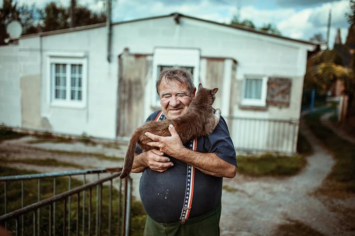 Возвращение блудного кота