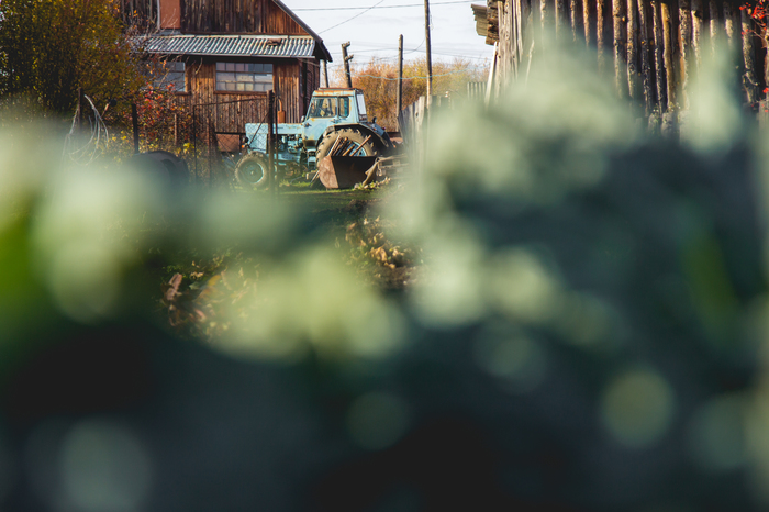Что такое осень это осень Осень, Листва, Природа, Настроение, Фотография, Длиннопост