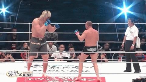 Коронный оверхенд Емельяненко: как вырубать соперника ударом «императора» Бокс, MMA, UFC, Емельяненко, This is Бокс, Гифка, Длиннопост