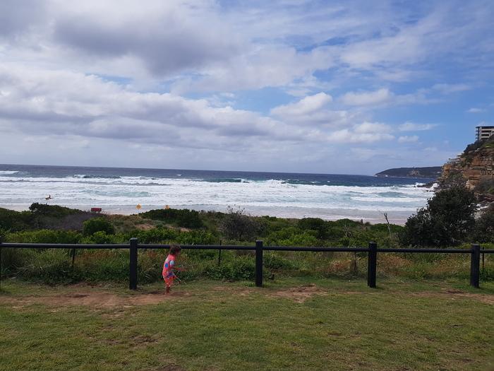 Спасатели на пляжах и серфинг культура в Австралии. Серфинг, Спасатели в австралии, Австралия, Акула, Пляж, Длиннопост