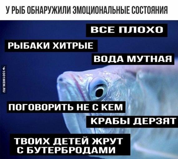 molodie-lesbiyanki-na-pol-karasika-vophnul-babe