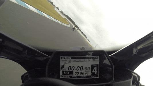Атака пернатых ДТП, Австралия, Мотогонки, Птицы, Мото, Мотоциклист, Трек, Гифка, Видео