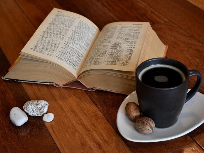 Книги и уединение Книги, Чтение, Своя атмосфера, Интроверт, Уединение, Длиннопост