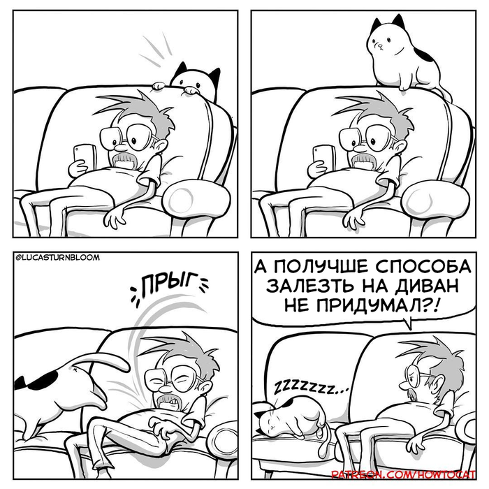 """""""Наилучший путь"""" Комиксы, Кот, Диван, Lucas Turnbloom"""