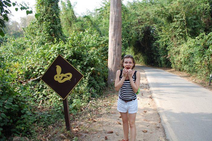 Паттайя или Пхукет? Выбираем место для зимовки в Тае Таиланд, Зимовка, Пхукет, Паттайя, Путешествия, Удаленная работа, Длиннопост