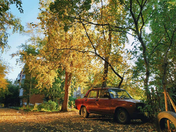 Яркая осень Мобильная фотография, Осень, Российский автопром, Омск, Сибирь, Фотография