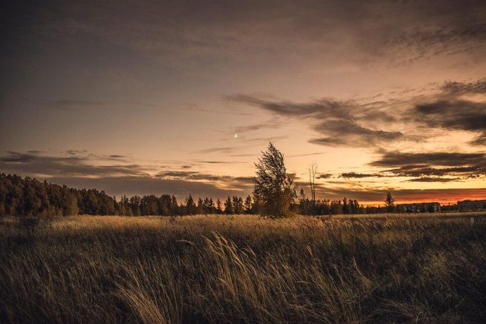 Лев Толстой Фотография, Лев Толстой, Начинающий фотограф, Липецкая область