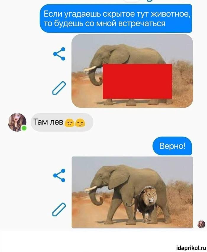 Кто всунет лучше чем льва Отфотошопьте, Мемы