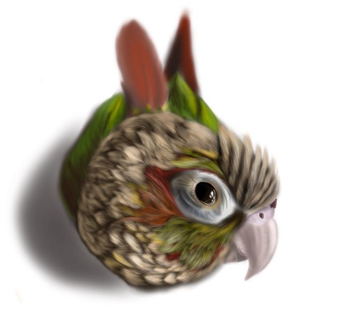 Попугай Рисунок, Попугай, Психотерапия