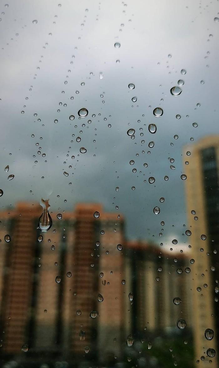 Дождливый Питер Дождь, Санкт-Петербург, Вид из окна, Лето