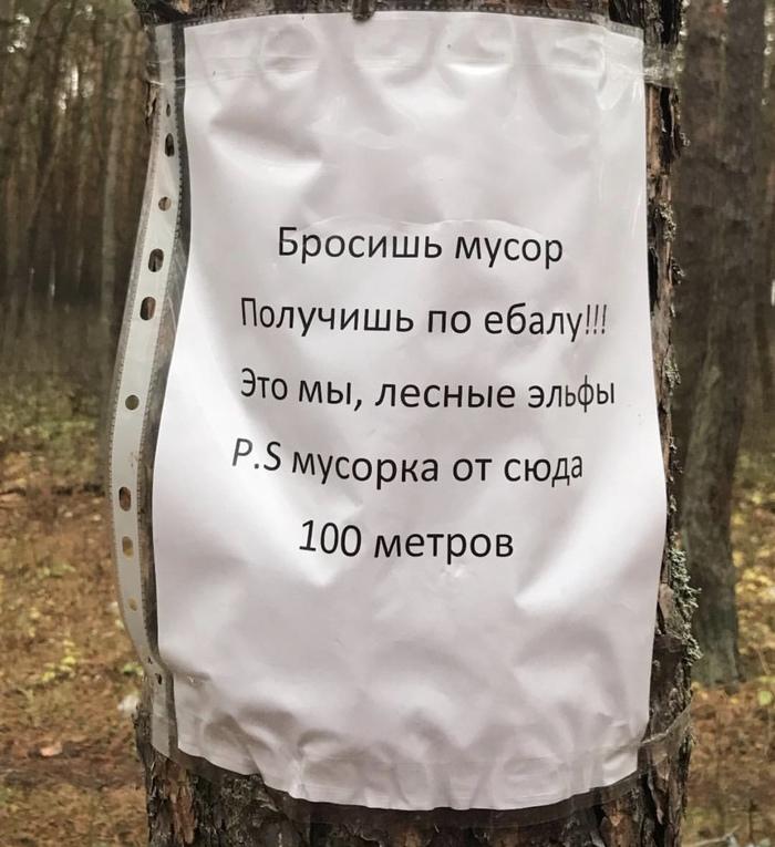 Послание от лесных эльфов