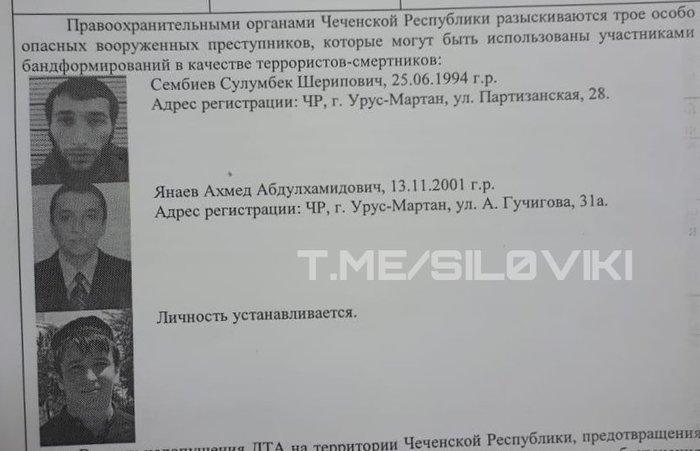 Розыск трех возможных террористов-смертников в Чечне Новости, Россия, Чечня, Без рейтинга, Полиция, Смертник, Негатив