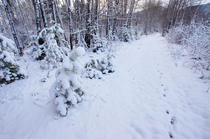 На Байкал пришла зима. Река Утулик. Байкал, Зима, Природа, Пейзаж, Снег, Байкальск, Река, Первый снег, Длиннопост
