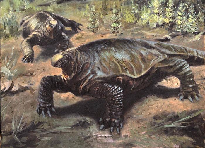 Парк пермского периода: на Сардинии найдены три вида синапсидов Наука, Палеонтология, Пермский период, Синапсиды, Копипаста, Elementyru, Длиннопост