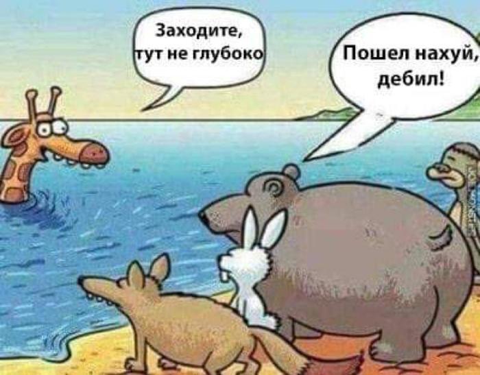 Дураков нет :)