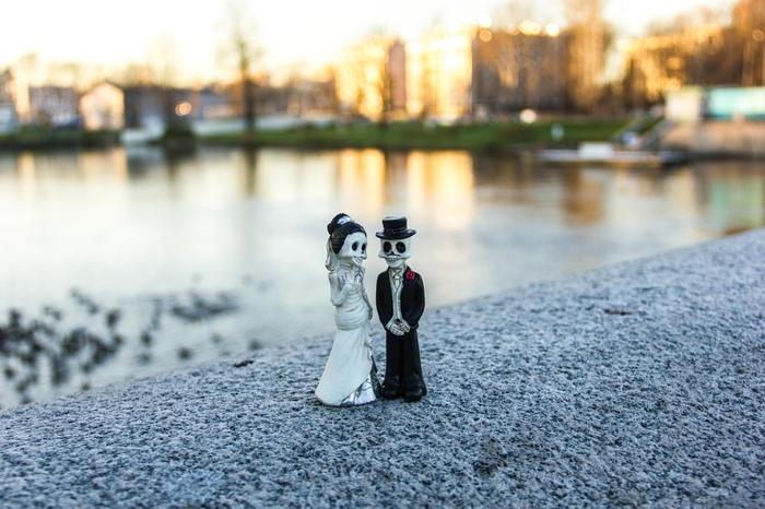 Замерзающий Елагин другими глазами Елагин остров, Санкт-Петербург, Осень, Фотография, Длиннопост