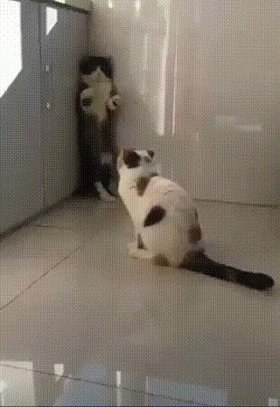 Куда собрался? Я тебя не отпускала!