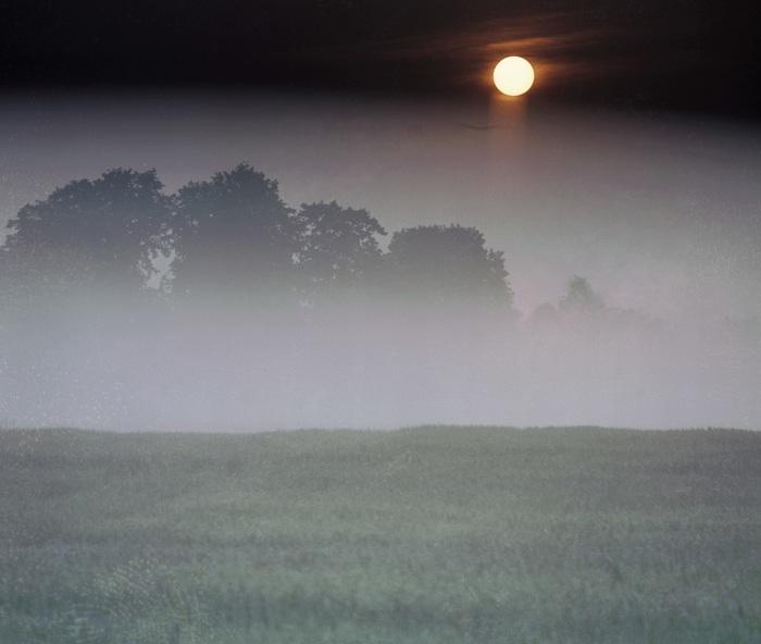 Ученые назвали наихудший год в истории человечества Год, Время, История, Туман, Климат