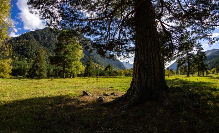 Осень в ущелье Аксаут Фотография, Горы, Кавказ, Canon, Пейзаж, Аксаут, Длиннопост