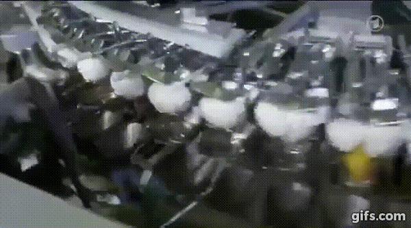 Прямые яйца. Яичная колбаса, Прямые яйца, Гифка, Длиннопост