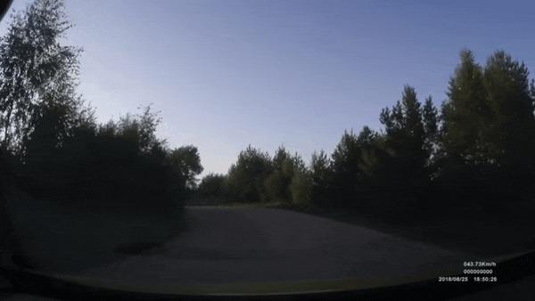 Вот новый поворот ДТП, Мото, Мотоциклист, Прилетело, Внезапно, Поворот, Гифка, Видео