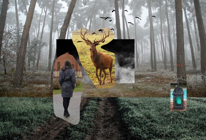 Таинственный лес Фотоманипуляции, Лес, Арт, Олень, Photoshop, Коллаж