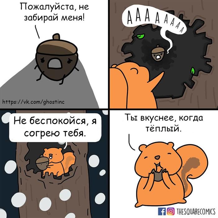 В тепле и небезопасности Комиксы, Перевел сам, Thesquarecomics, Орехи, Тепло, Белка, Запасы на зиму