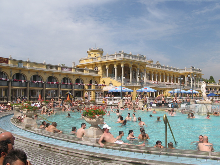 Купальни Сеченьи.Будапешт. Венгрия, Будапешт, Купание, Длиннопост