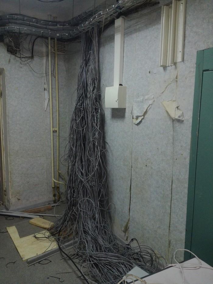 Шеф попросил помочь СКС восстановить Кабель, Локальная сеть, Фотография