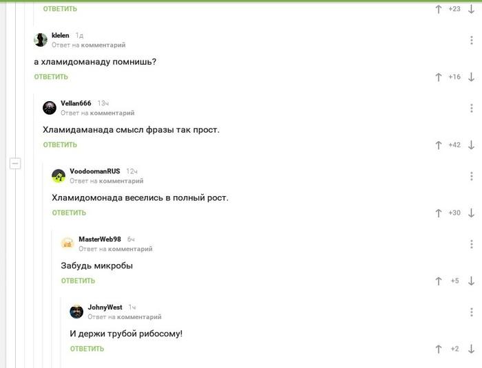 Комменты биологов Биология, Кавер, Hakuna matata, Скриншот