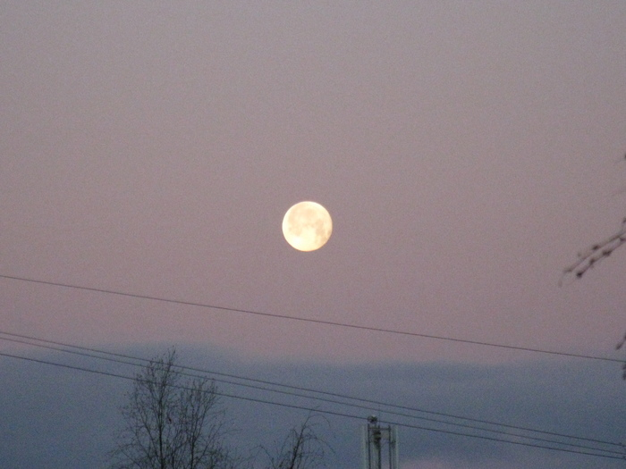 На луне Длиннопост, Окно, Луна, Фотография, Фотограф
