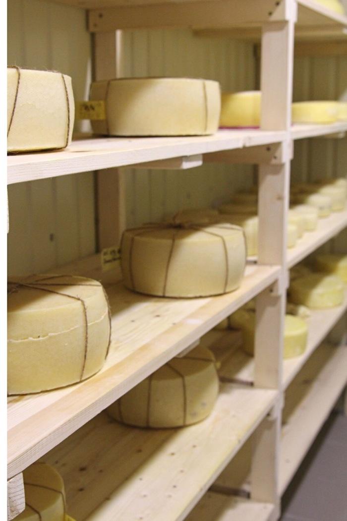 От кастрюльки до сыроварни. Сыр, Сыроделие, Крафт, Длиннопост, Еда, Оборудование