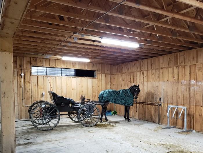 Парковка только для лошадей (с повозками) Парковка, Канада, Лошадь