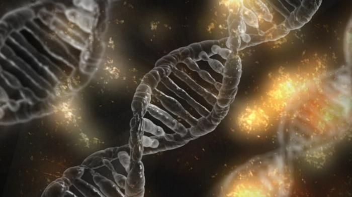 Китайский учёный заявил, что создал генетически модифицированных детей Общество, Китай, Здоровье, Ученые, ДНК, Дети, Liferu, ВИЧ